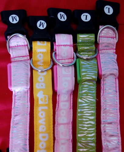 collar leds  para perros a solo $2.990 diferentes diseños