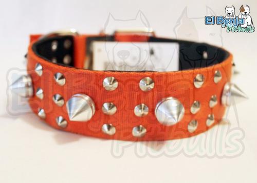 collar para boxer con picos