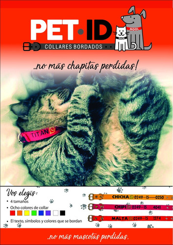 collar para gatos bordado personalizado pet id