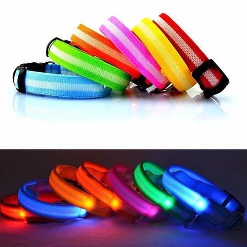 collar para mascotas con luz led.