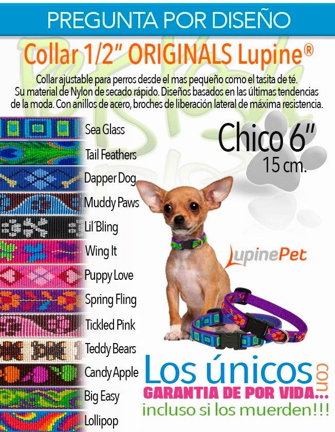 1577b85725c6 Collar Para Perro O Gato Lupine 1 2 Extra Chico 15 Cm -   329.00 en ...