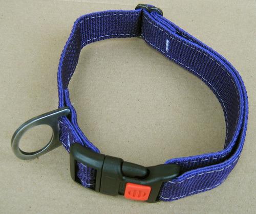 collar para perros regulable