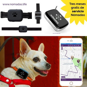 22a808638 Collar Gps Para Perros en Mercado Libre México