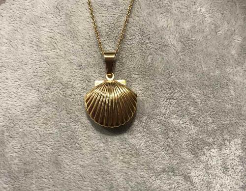 collar relicario conchita de mar acero 18k
