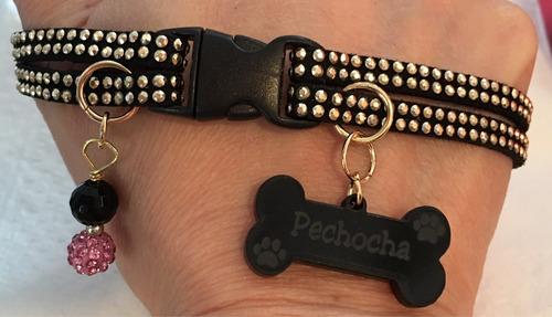 collares para mascotas pequeñas una joya para tu mascota!