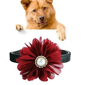 249072a9f20b Collar Para Gatos O Perros Pequeños Con Moño Flor - Animales y Mascotas en  Mercado Libre México