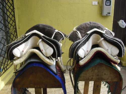 Collera de monturas cada una en for Monturas para caballos