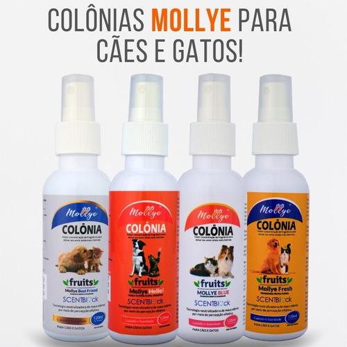 colônia para pets mollye best friend 120ml c/ sentblock