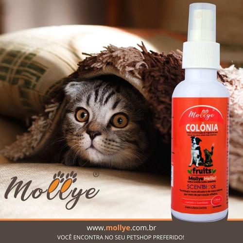 colônia para pets mollye hello cão e gato 120ml c/ sentblock