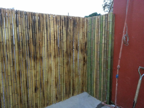 colocacion de cañas de bambu