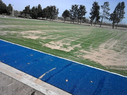colocación de césped sintético - fútbol - hockey - rugby -