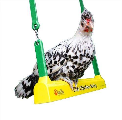 columpio para pollo fowl play products, juguete para pollos,