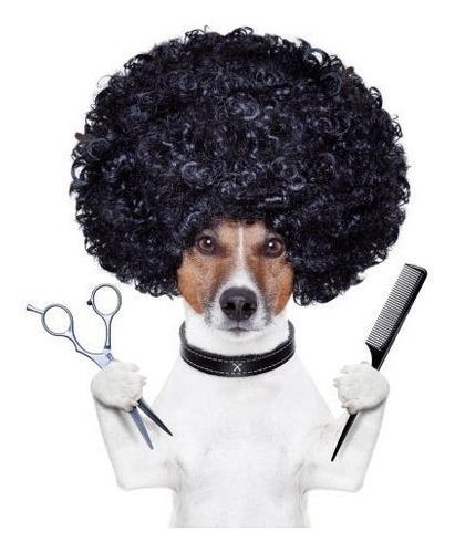 combo de peluqueria canina