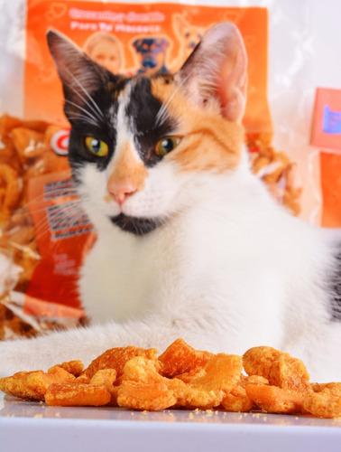 combo delicias nutrello para gatos + gratis envío