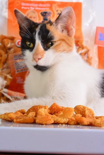 combo funcional nutrello para gatos