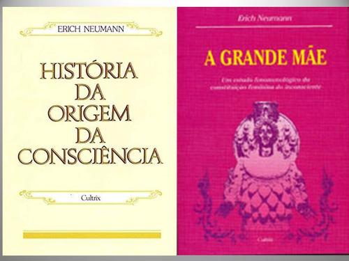 combo livros a grande mãe e hist da origem da consciência