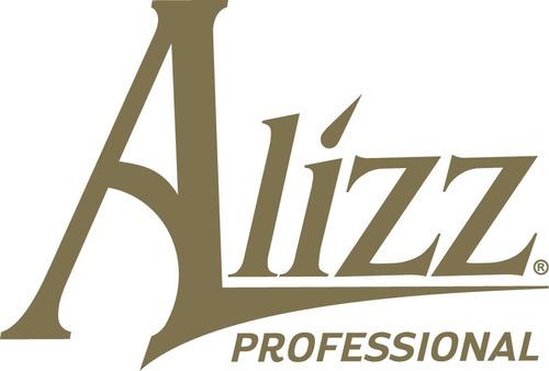 combo set profesional alizz secador + plancha salones