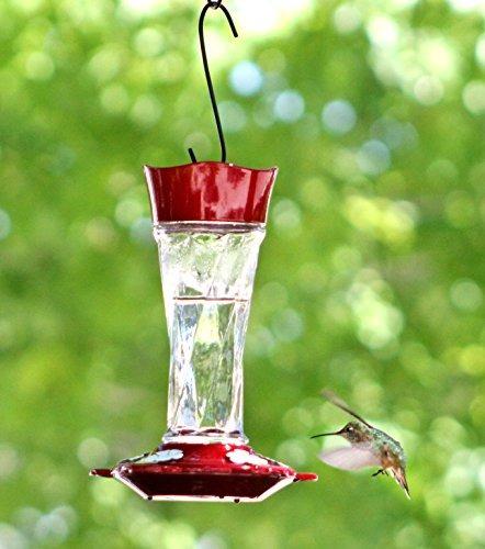 comedero de aves estilo clásico colibrí con cónicos twist