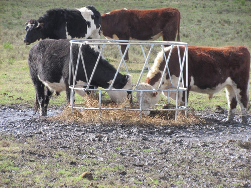 comedero de fardos rdm para ganado. aro.
