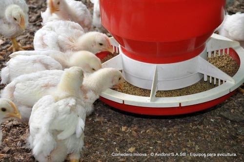 comedero manual innova para pollo de engorde