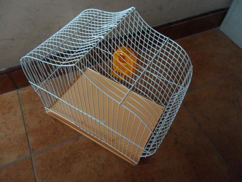 comedero para aves, canarios mod. pared (6pzas)
