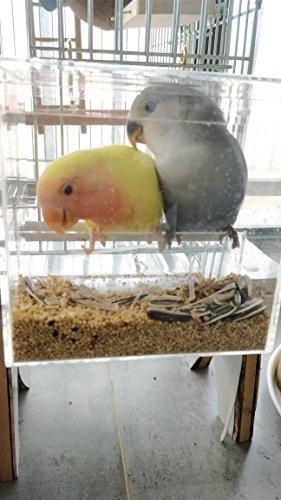 comedero para pájaros kintor nomess sin ensamblaje con ??