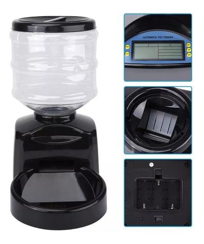 comedouro alimentador digital ração programável + brinde
