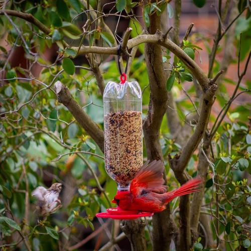 comedouro para pássaros alimentador aves pet 2 litros