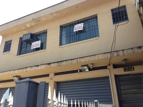 comercial para aluguel, 0 dormitórios, vila bonilha - são paulo - 6945