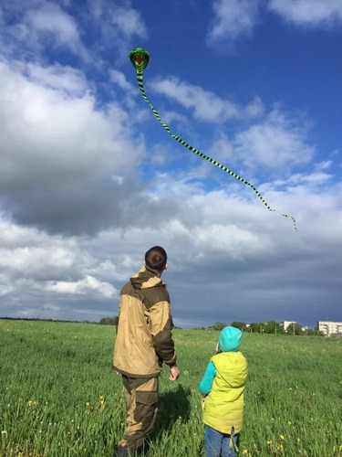 cometa importada cobra de 15 metros polyester kite