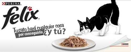 comida para gato sensacion pollo e higado en salsa - felix