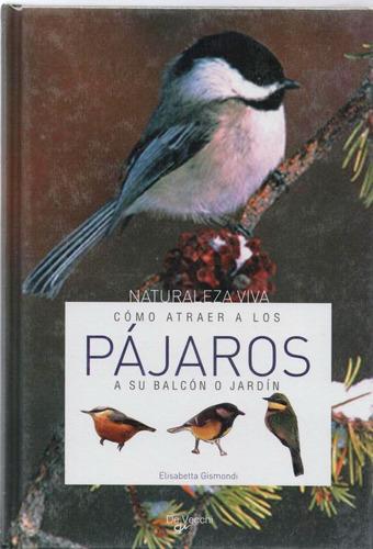 cómo atraer a los pájaros a su balcón o jardín.