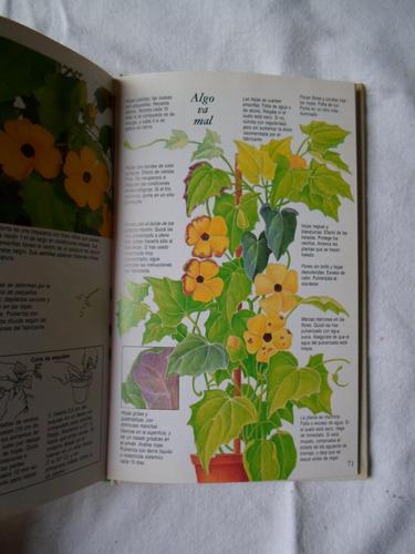 como cuidar tus plantas  / de balcón, de interior con flore