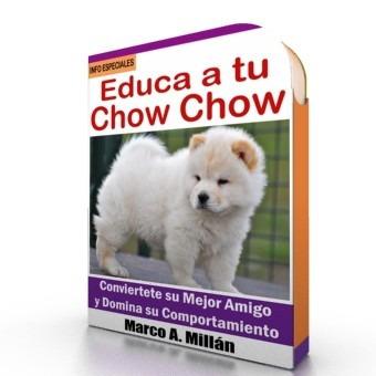 como educar a un perro chow chow - videos paso a paso
