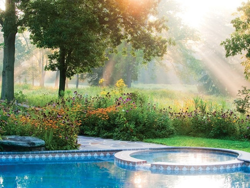 como montar uma empresa de manutenção de jardins e piscinas