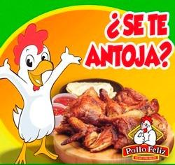 como poner negocio pollo asado al carbon, receta pollo feliz
