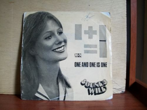 compacto sounds wild 45 rpm 1973