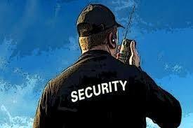 compañia de seguridad privada