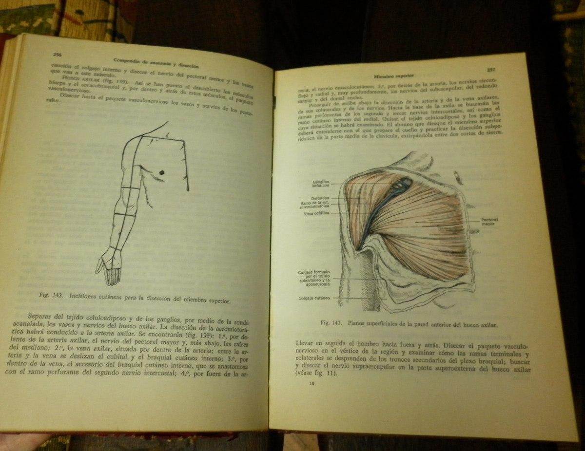 Compendio De Anatomia Y Disección Rouviere - $ 600,00 en Mercado Libre