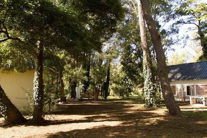 complejo de 3 cabañas en el bosque peralta ramos