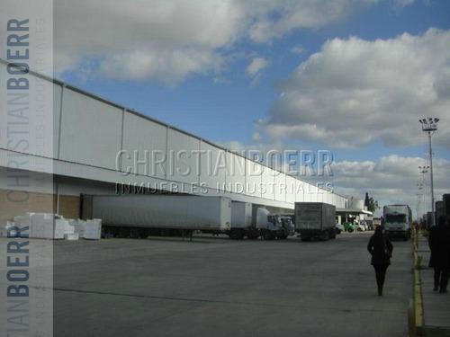 complejo logístico - 6.400m cub 10 mts de altura, con docks