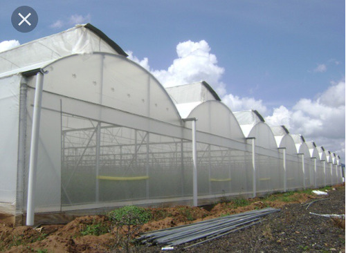 compra de estructura de invernadero