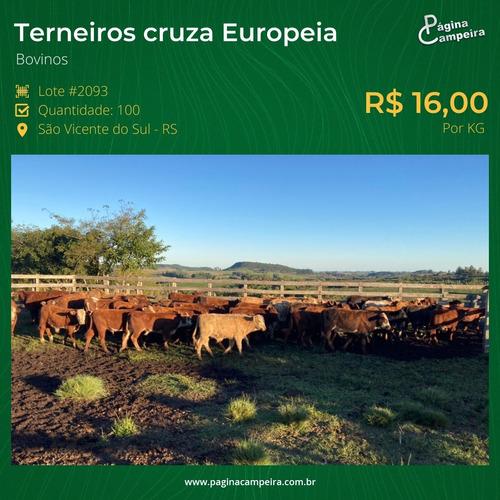 compra e venda de gado e campo, consultoria rural.