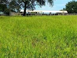 compre  o seu terreno próximo a taboão da serra   002