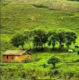 compre seu terreno nesse maravilhoso lugar. 036
