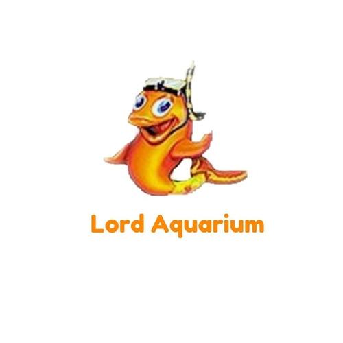 compressor aquario peixe