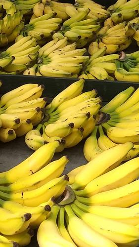 compro banana prata, nanica e outras em quantidade