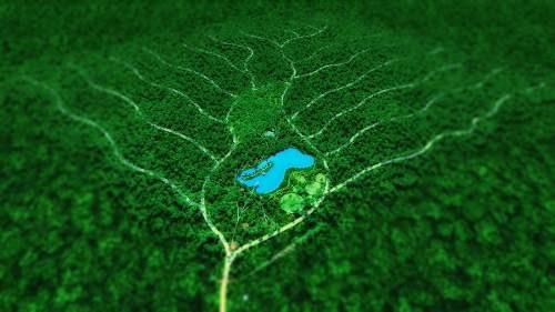 comunidad en la selva responsable con el medio ambiente