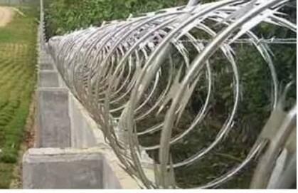 concertinas galvanizada (rollos 6 metros lineales)