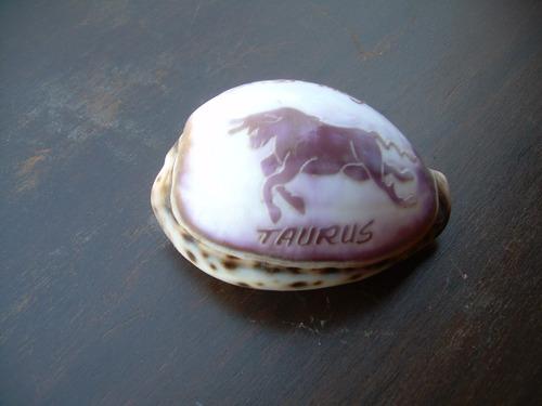 concha tallada  taurus-antigua